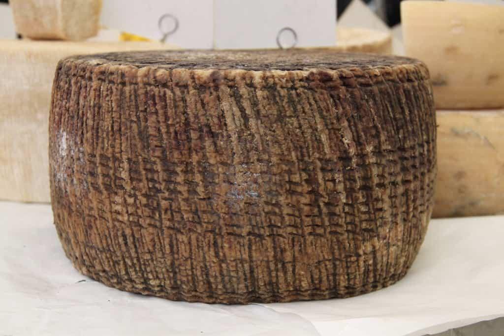 queijo pecorino - toscano