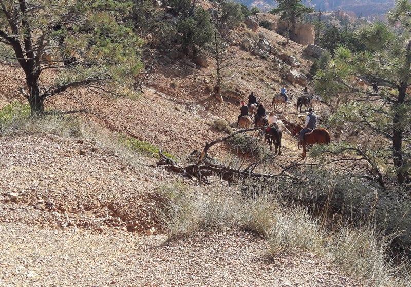 Passeio a cavalo nas trilhas do Bryce Canyon