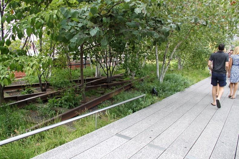 As plantas do High Line