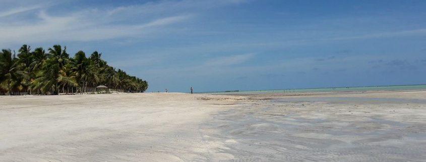 praias de Maragogi
