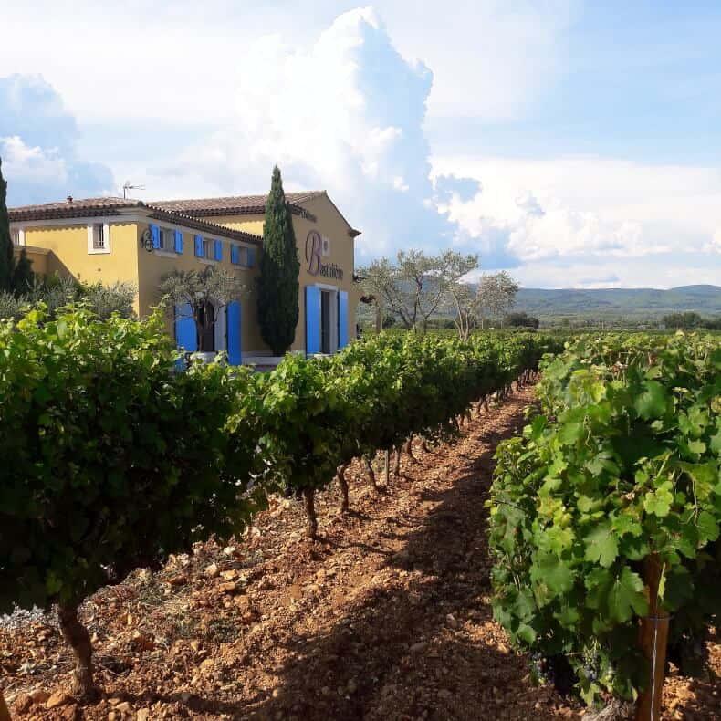 vinícolas da Provença